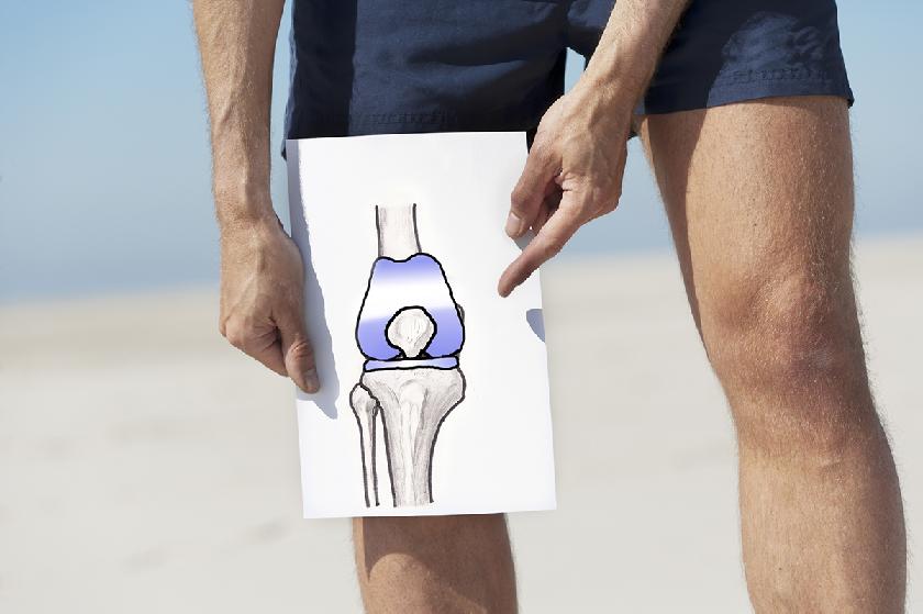 Manfaat Teripang Laut Untuk Tulang Dan Sendi