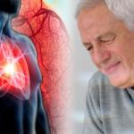 Benarkah Teripang Bermanfaat Untuk Penyakit Jantung ?