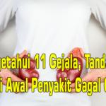 Mengetahui 11 Gejala, Tanda & Ciri Awal Penyakit Gagal Ginjal